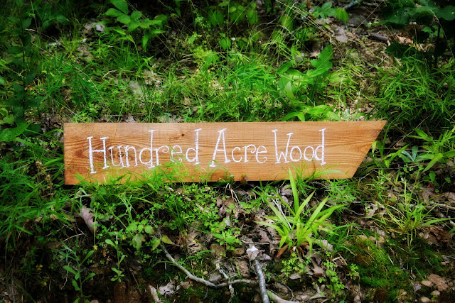 Hundred Acre Wood Sign directing you to Winnie the Pooh's house