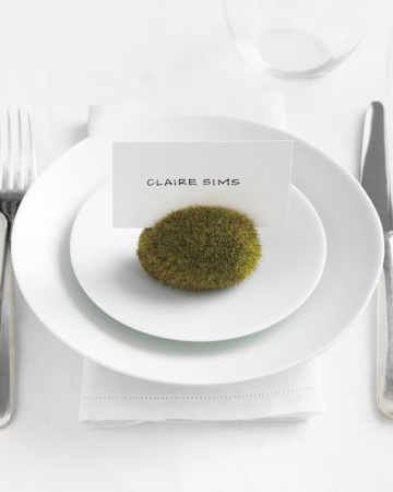 moss rock place card holder, place cards, wedding place card