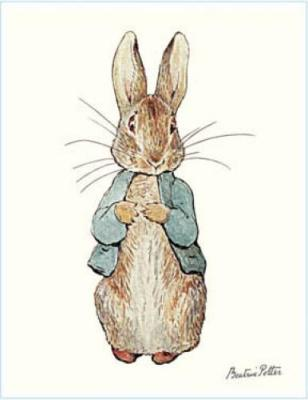 Peter Rabbit drawn by Beatrix Potter, a great theme for a Baby Shower or First Birthday Party