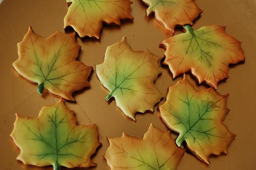 Autumn Maple Leaf Cookies