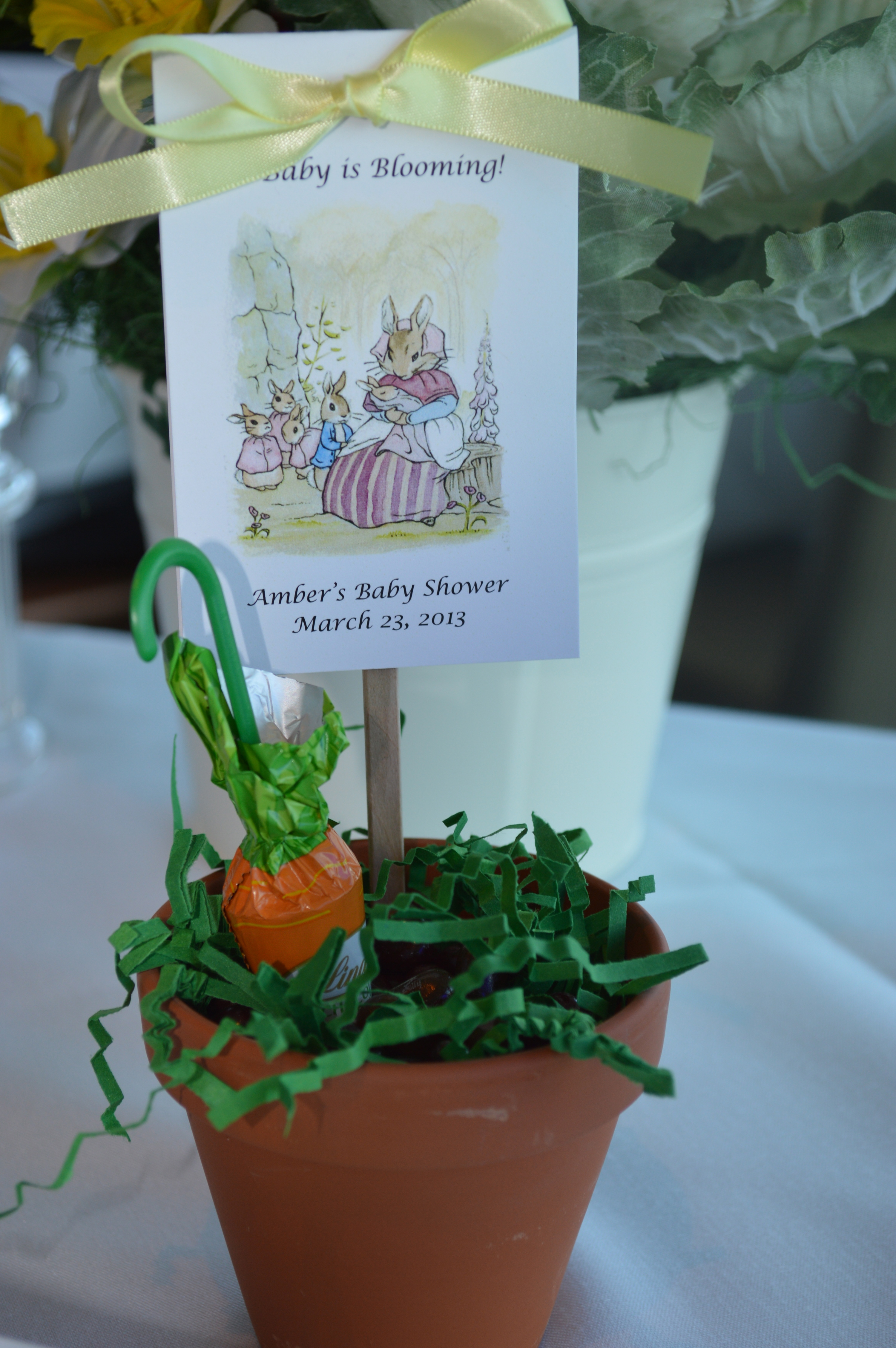 celebrations a peter rabbit baby shower celebrate decorate