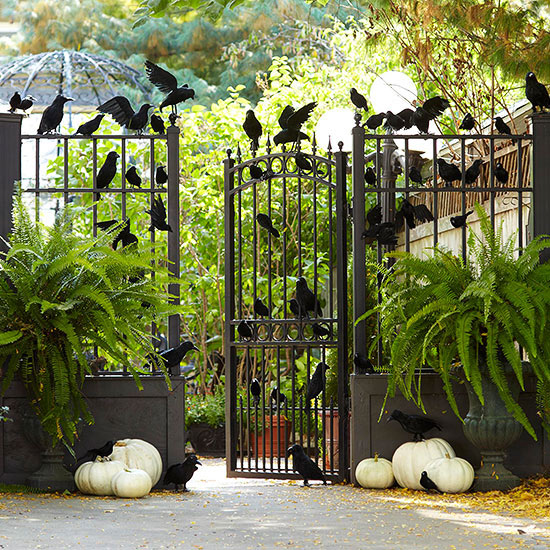 Crows on gate for Halloween Decoration