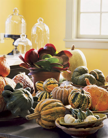 Squash and pumpkin centerpiece ~ Country Living