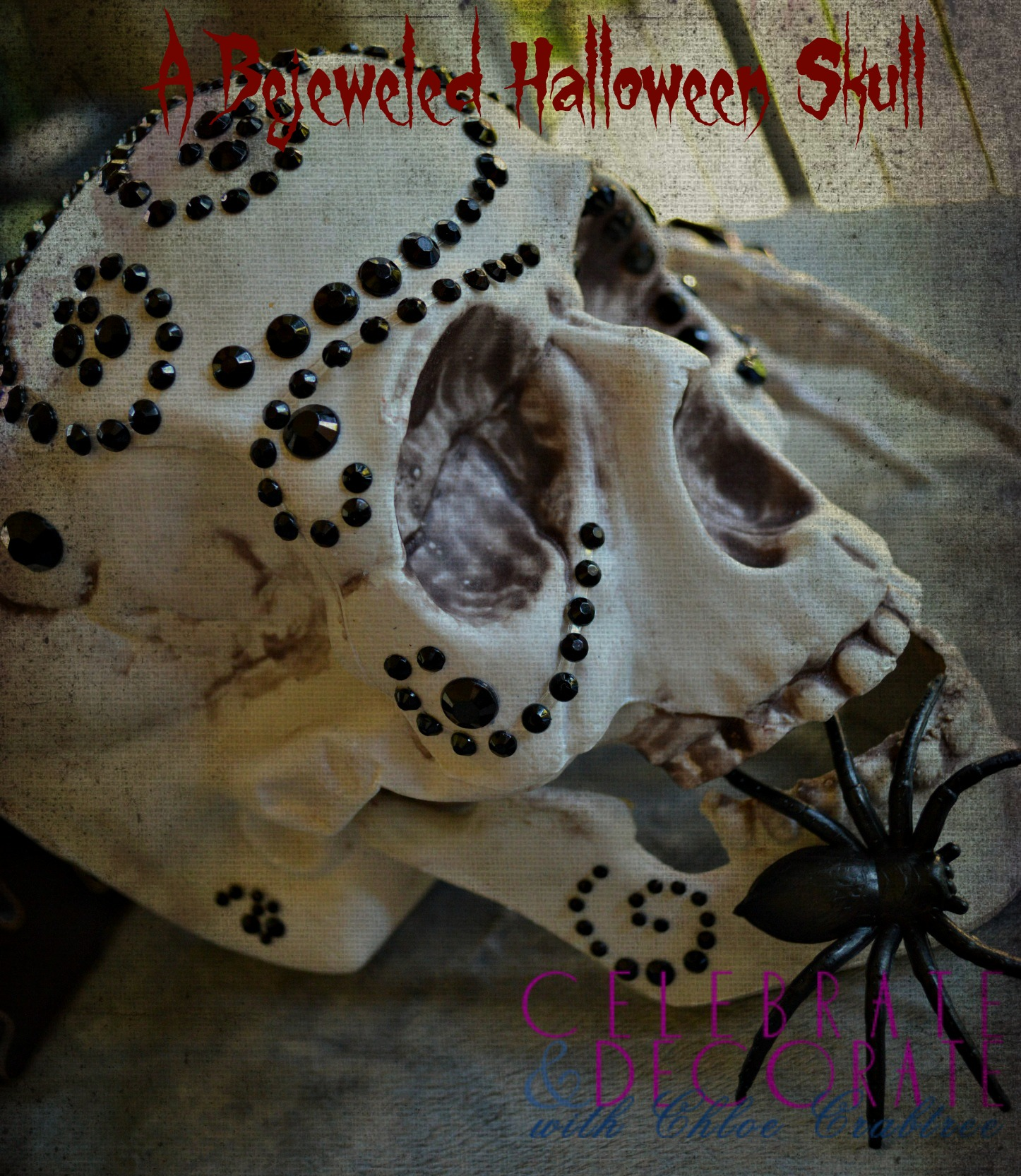 A Bejeweled Halloween Skull