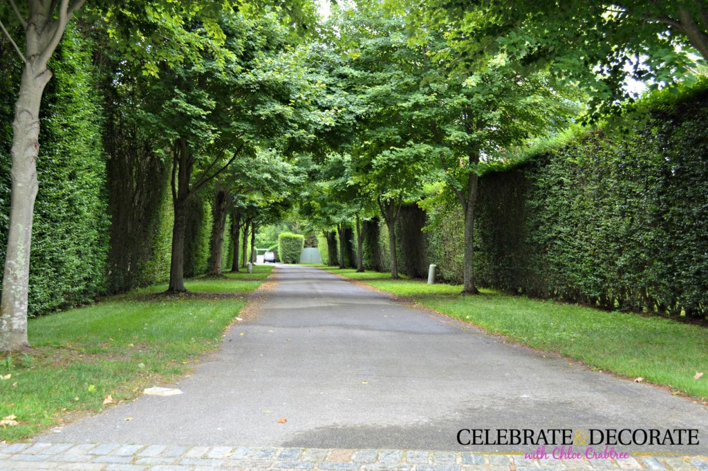 A long private driveway in the Hamptons
