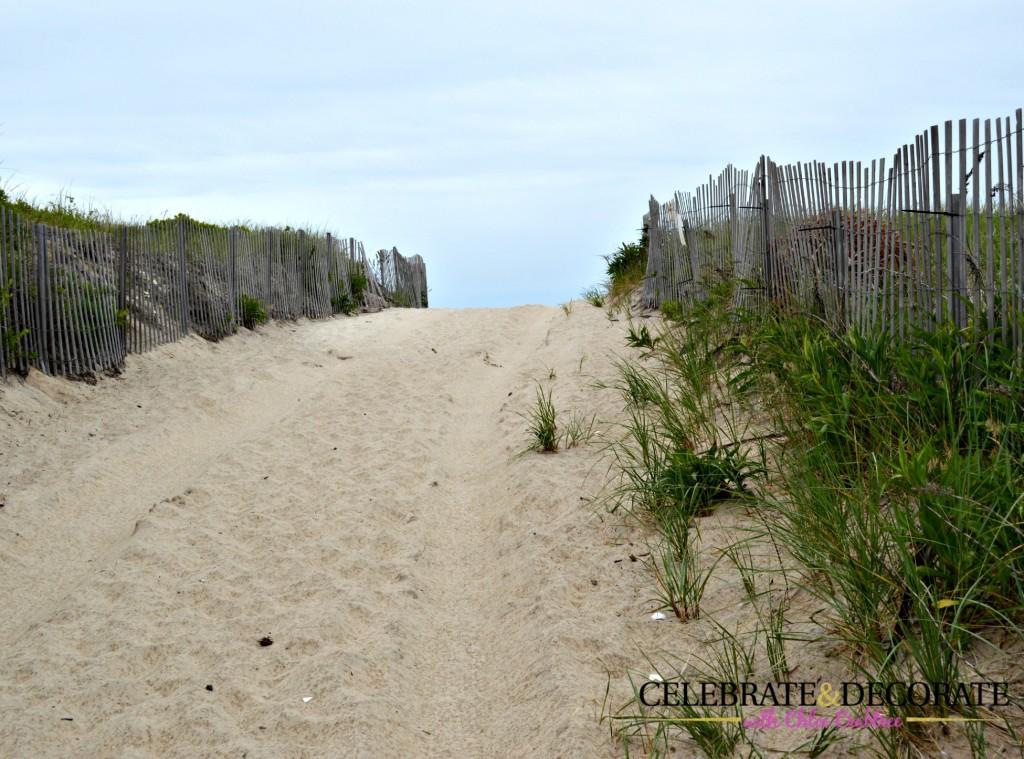 Through-the-dunes-to-the-beach