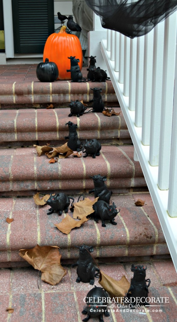 Creepy Rats greet guest for Halloween