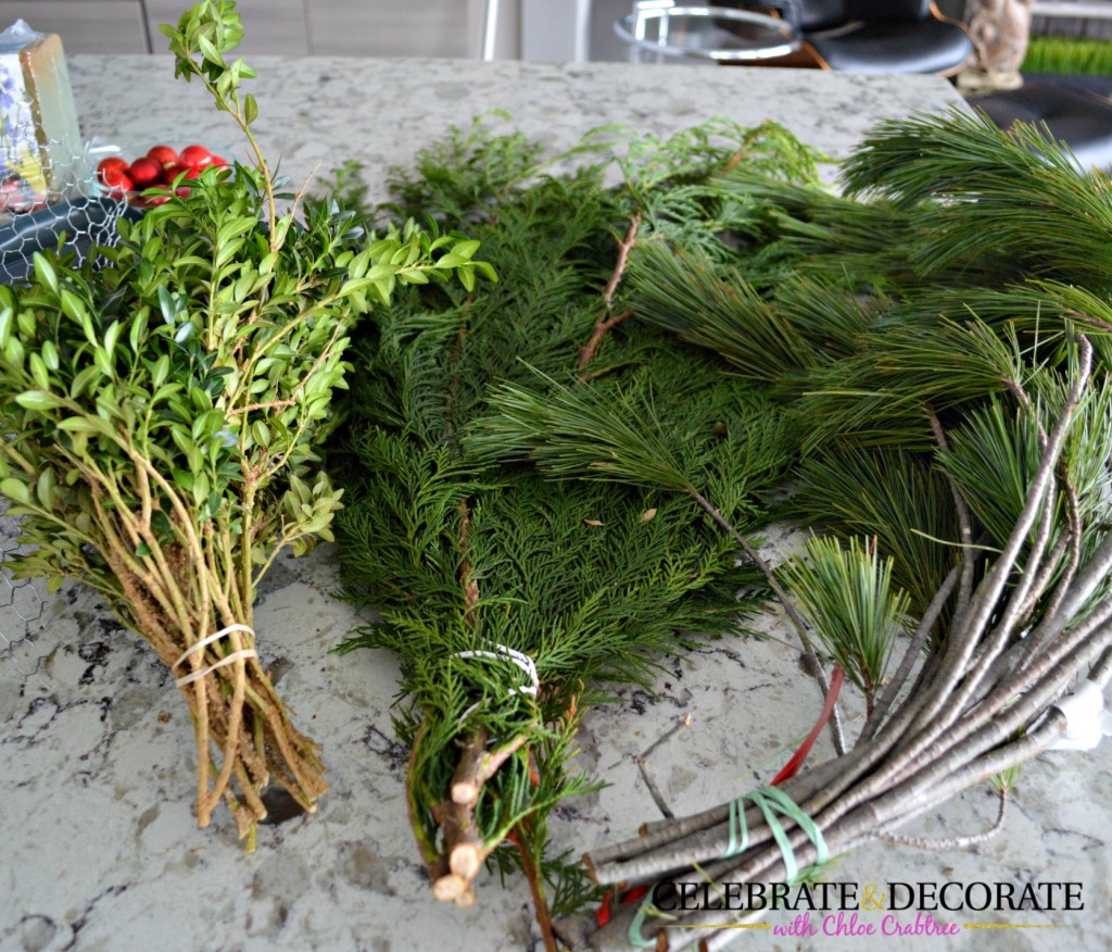 Evergreens for making a Christmas Centerpiece
