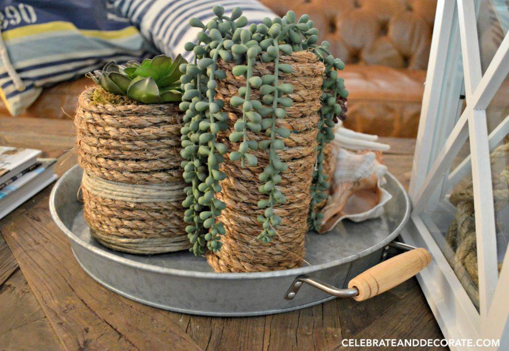 Coastal Succulent vases