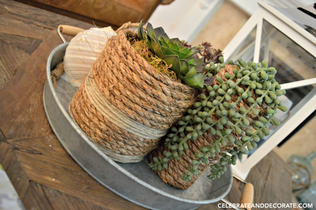 DIY Coastal vases for a succulent display