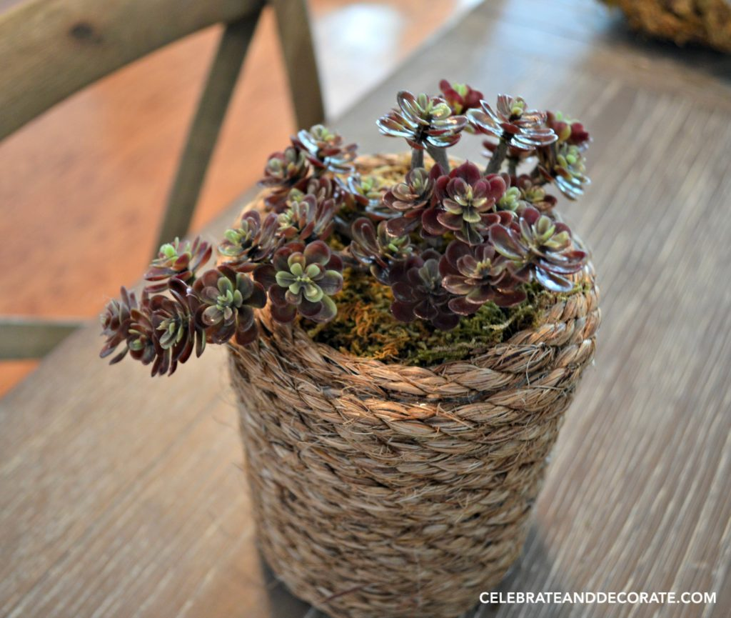 Faux succulents in a coastal diy vase
