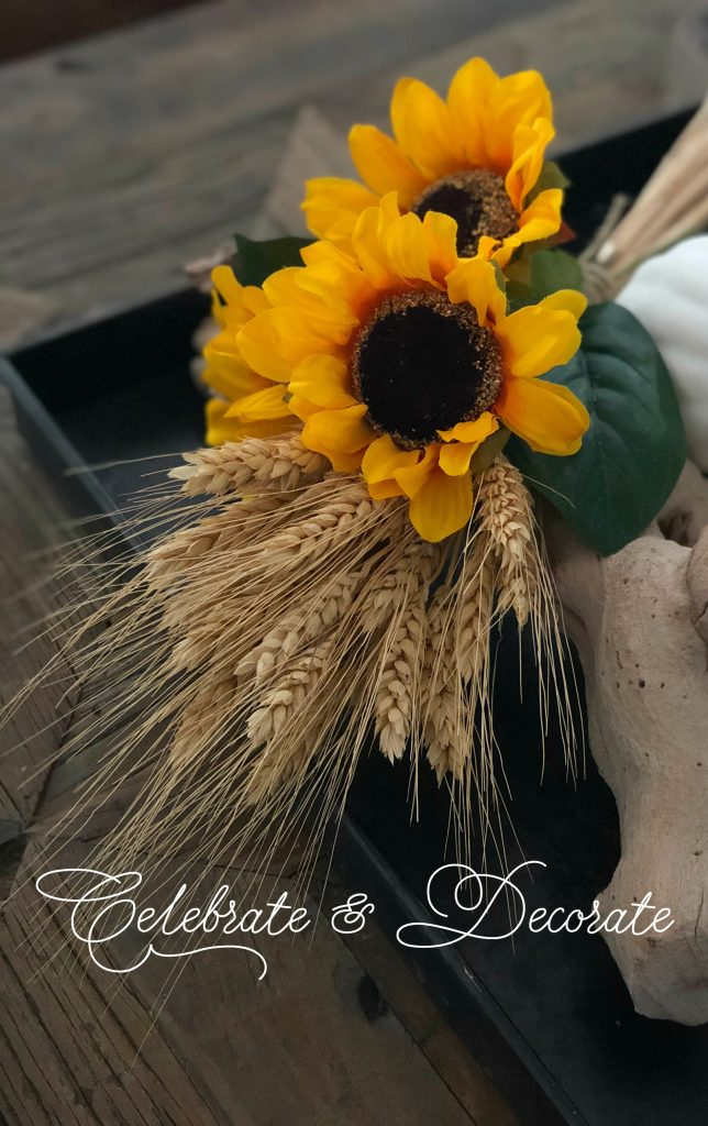 Sunflowers and wheat are both ready for harvest and ready to display for fall