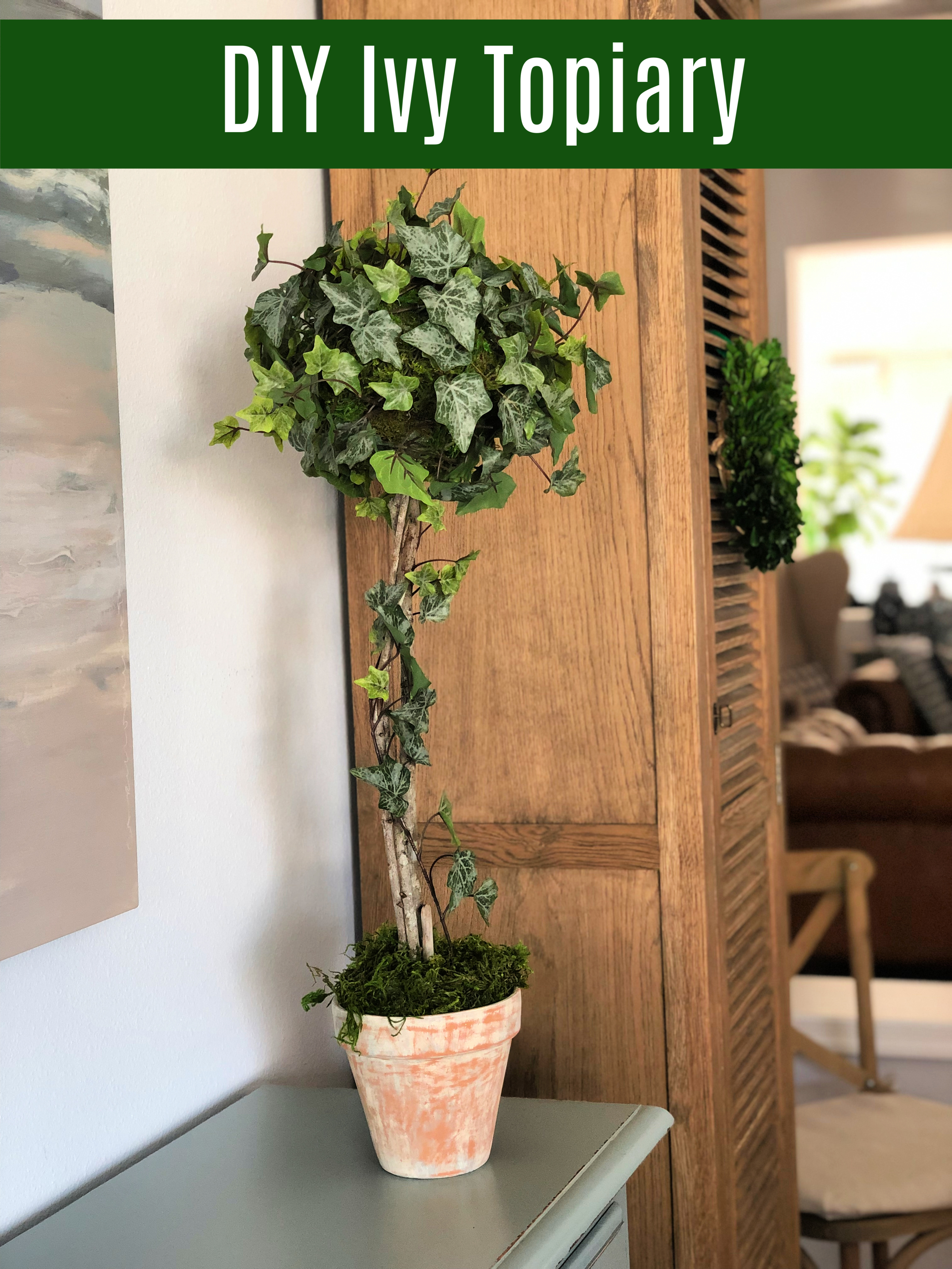Make An Ivy Topiary Celebrate Decorate