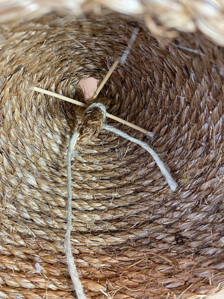 View inside of a decorative rope bee skep with two wood dowels crossed up inside of it and a string tying a rope loop in there