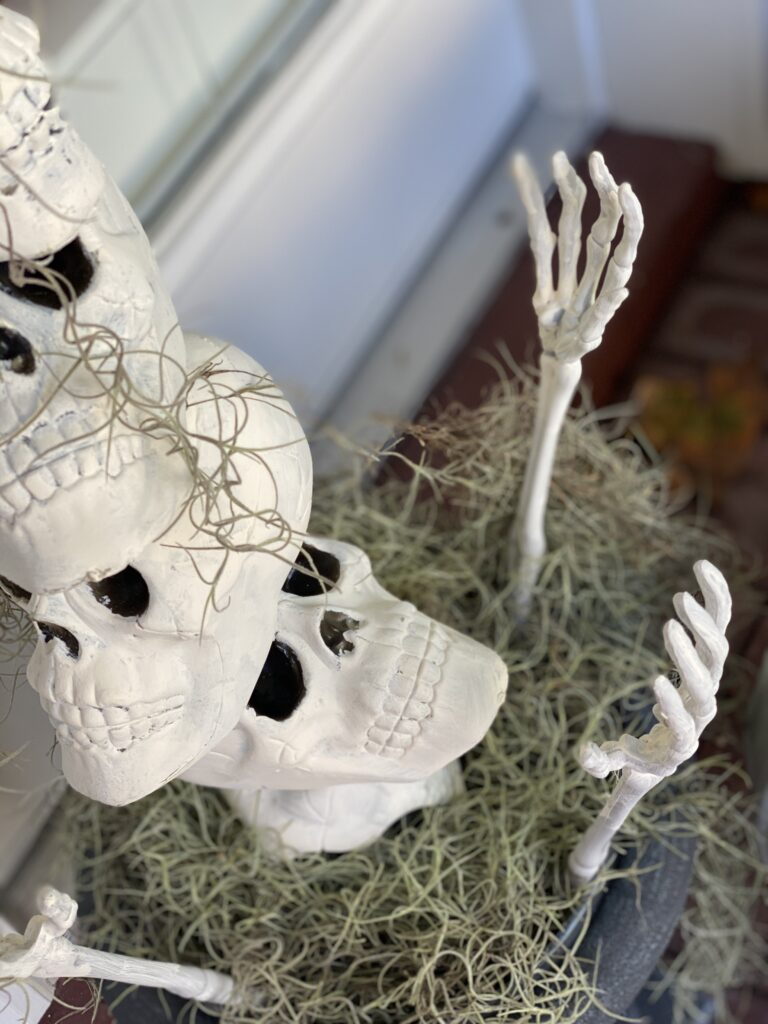 dollar store skulls looking up from a pot of spanish moss and dollar store skeleton hand reaching out of the pot