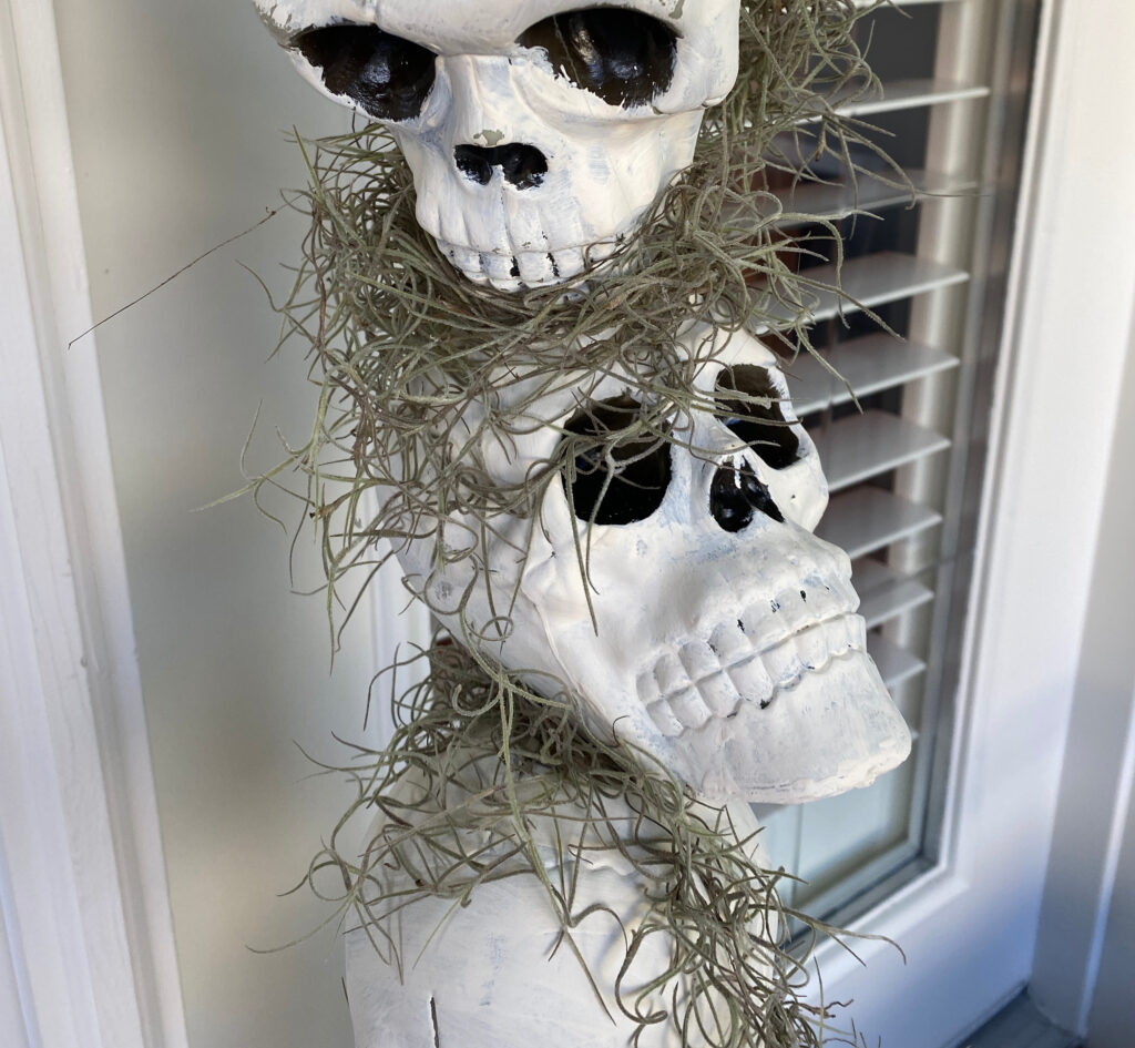plastic dollar store skulls on a pole with spanish moss between them and a door with shutters behind them