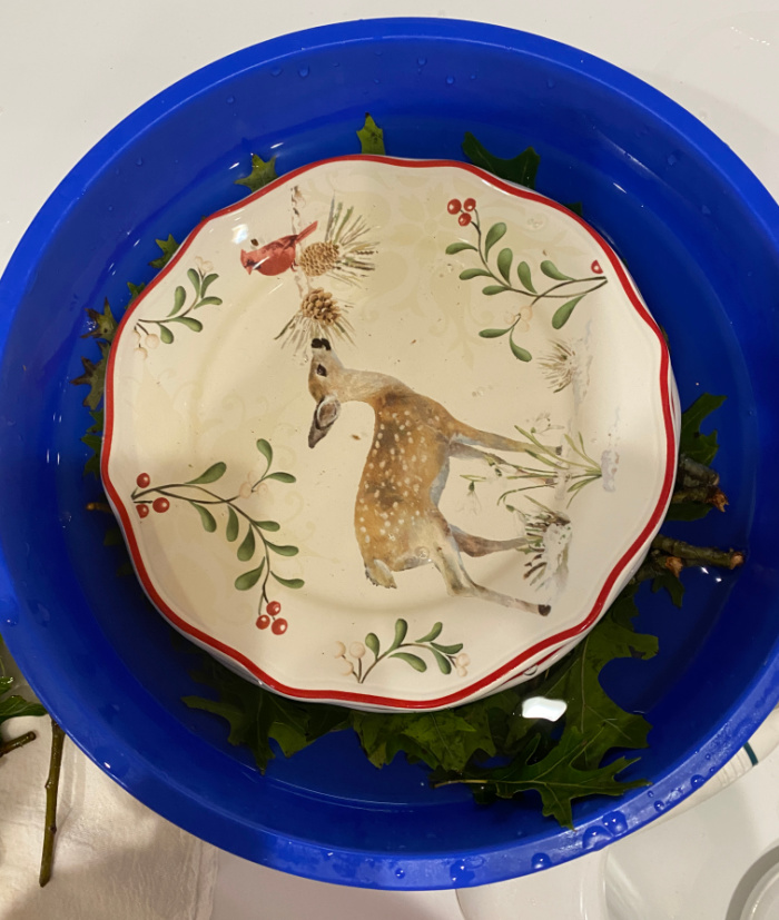 A large blue bowl with water in it and oak leaves and a plate with Christmas plate on it with a spotted fawn sniffing at a branch with a pinecone on it.