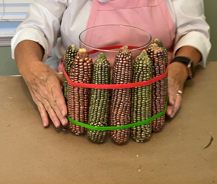 someone in a pink apron holding 7 ears of painted indian corn inside red and green rubber bands against a glass vase